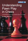 Understanding Pawn Play in Chess